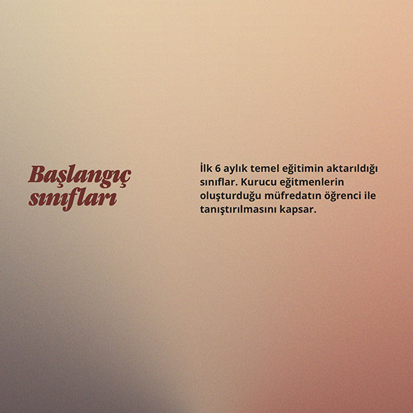 tangoist tango kursu sınıfları